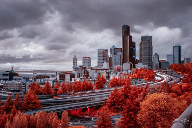 infrared Seattle from Jose Rizal Bridge at 665 nm.