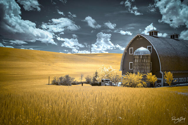 720 nm false color Colfax truck and barn in the Palouse