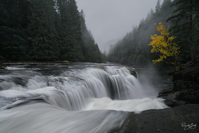 Lewis River Falls with fall color in October