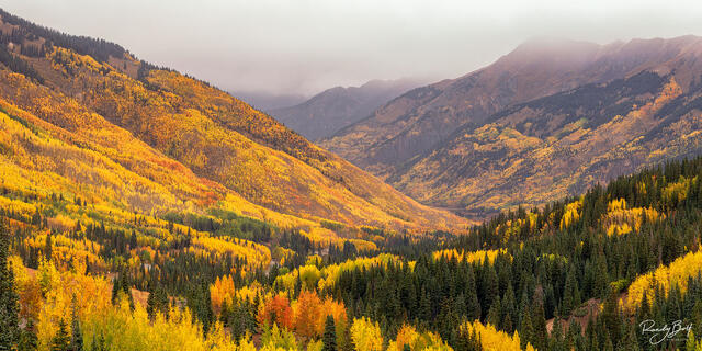 fall color on the million dollar highway near Red Mountain Pass.