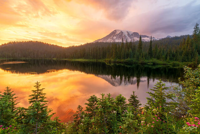sunset over reflection lakes in mount rainier national park.
