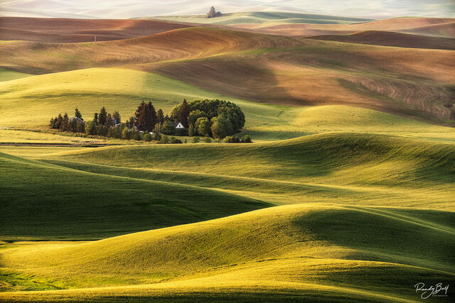 farmstead in the golden light from sunrise in the Palouse