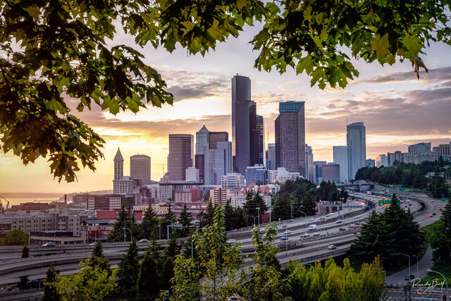 downtown seattle framed by leaves from Jose Rizal Bridge