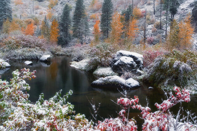 fall color and snow in the Tumwater Canyon near Leavenworth, Washington
