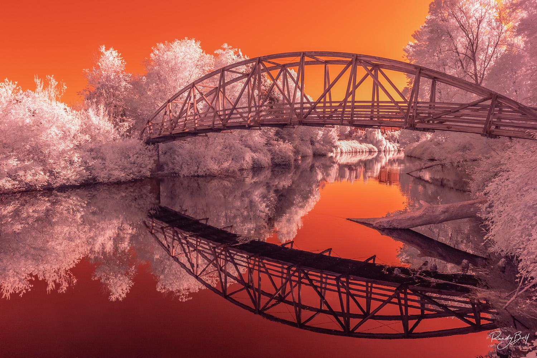 falso color infrared image of the pedestrian bridge in Bothell, Washington