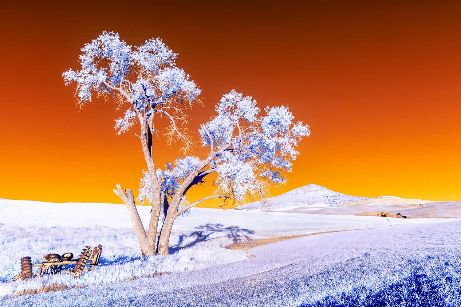 false color infrared of the Palouse with Steptoe butte in the background