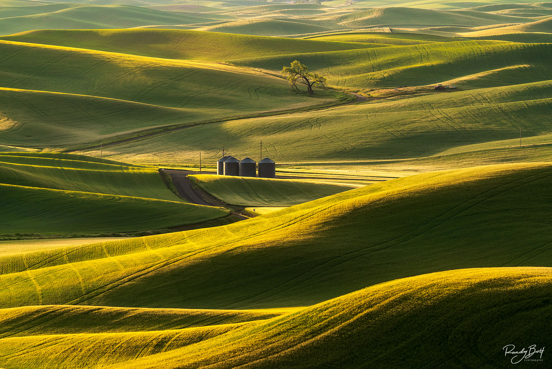 4 silos in a field in the Palouse region of Washington State